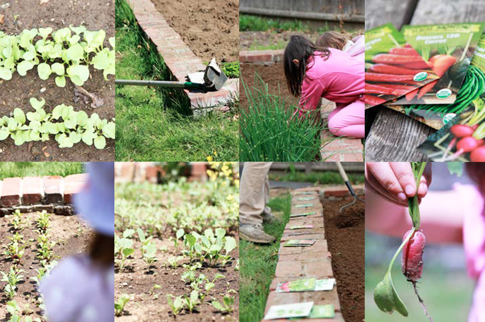 Growing A Vegetable Garden As A Family