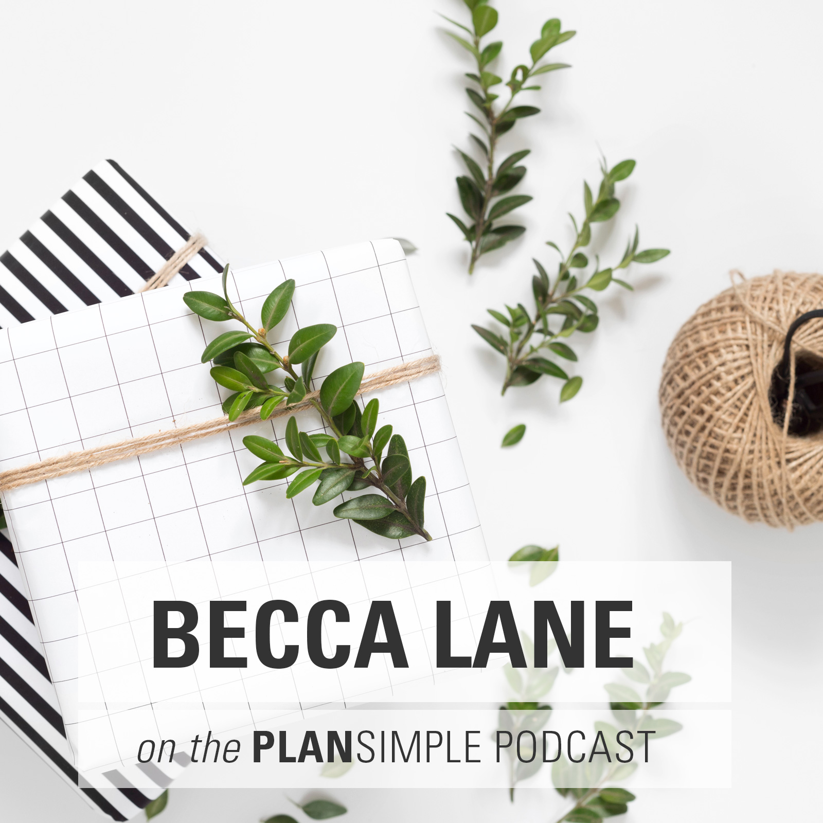 Simplifying Toys With Becca Lane