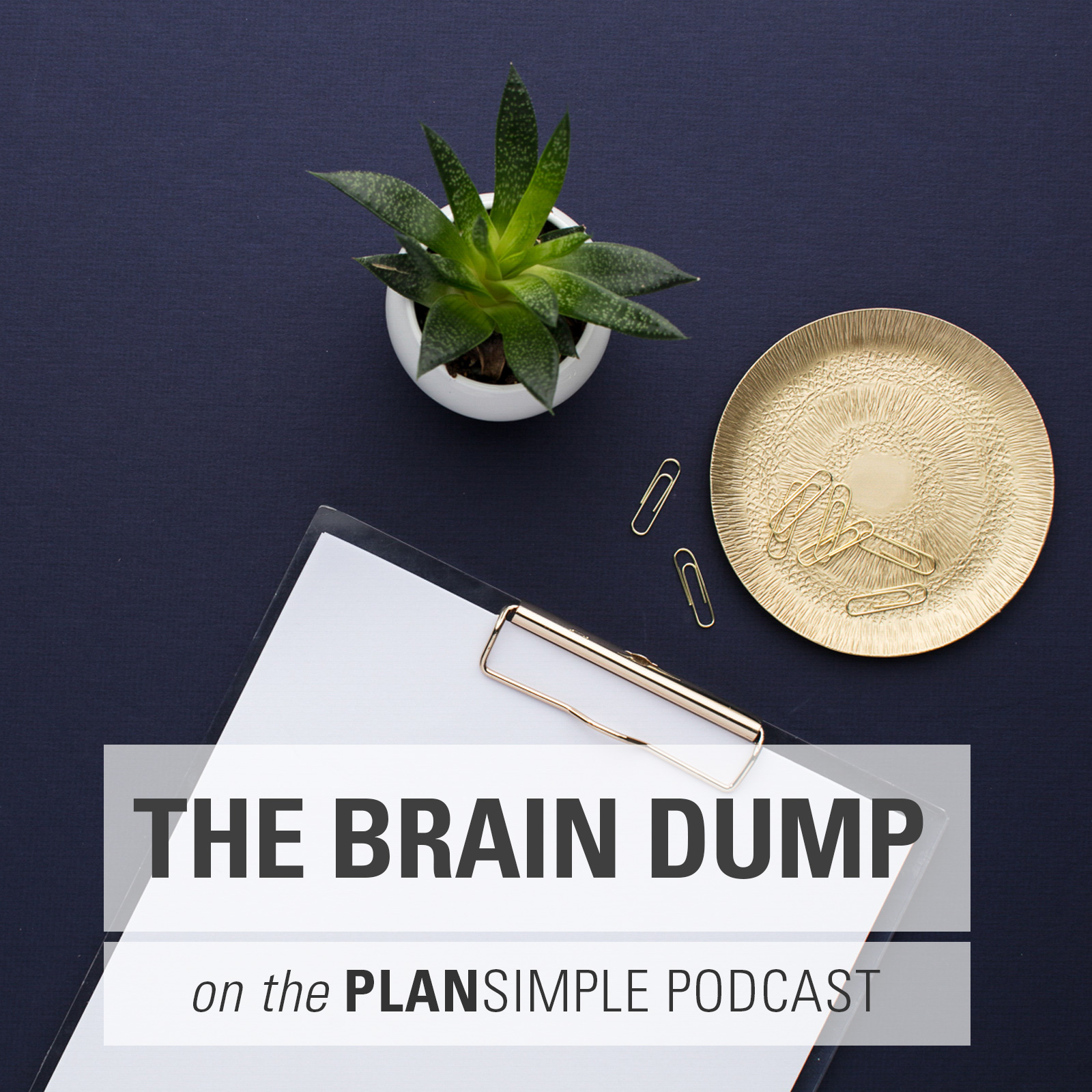 What To Do With The Brain Dump